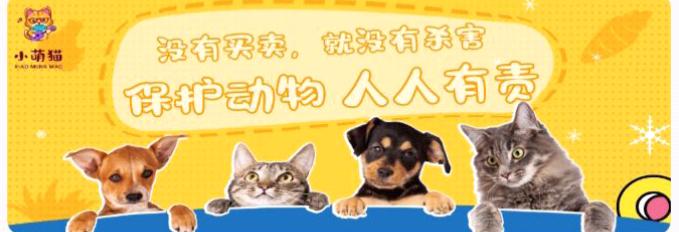 图片[1]-最稳的小萌猫视频卷轴模式上线了,已上应用商城,-首码社