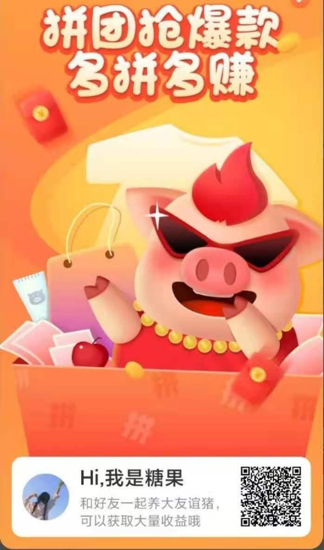 图片[8]-一起来养猪拼团,包扶持,无限代收益-首码社