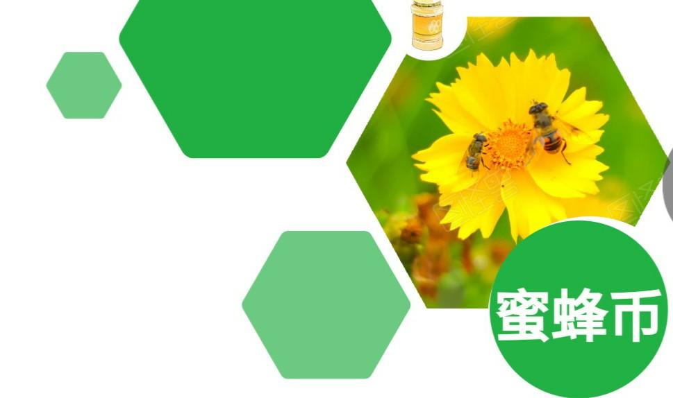 图片[1]-【蜜蜂币】预热锁粉阶段,提前推广布局,欢乐翻倍!-首码社