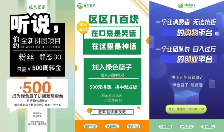 图片[3]-绿色篮子,目前最稳定的拼团平台,正处在红利期扫码抢占先机-首码社